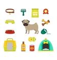 Pug dog symbols vector image vector image