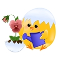 Chick watering pansies vector image vector image