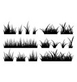 monochrome of grass vector image