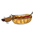 cartoon image of sausage dog vector image