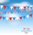 Hanging Bunting Pennants in National American vector image