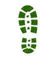 tree leaves as shoe soles vector image