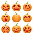 Collect Pumpkin for Halloween vector image