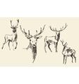 Set of deers engraving vintage hand drawn sketch vector image