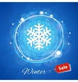 Winter Sale Banner with Snowflake on Blue vector image