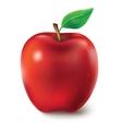 a juicy apple vector image
