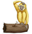 Gibbon on log vector image vector image