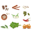 group of spices vector vector image