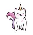 isolated magic cat unicorn vector image