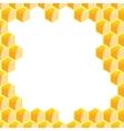 hexagonal frame vector image