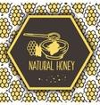 natural honey banners Bio hand drawn set vector image