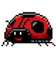 Lady bug vector image