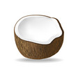 half coconut isolated on white background vector image