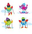 Skiing birds vector image