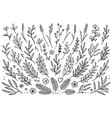 hand drawn set of tree branches vector image