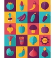 Vegetable Flat Icon with Long Shadow vector image