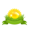 Nature symbols - sun green leaves grass ribbon vector image