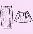 womens skirt vector image