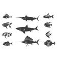 Grey fish silhouettes set vector image