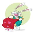 Matador white rabbit vector image