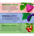 Three banner with raspberries currants and vector image