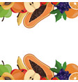 fruit healthy border card vector image