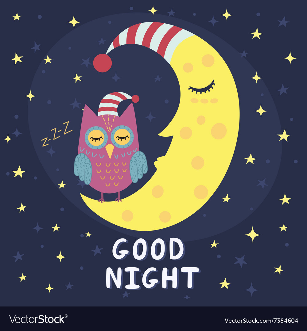 Good night card with sleeping moon and cute owl vector
