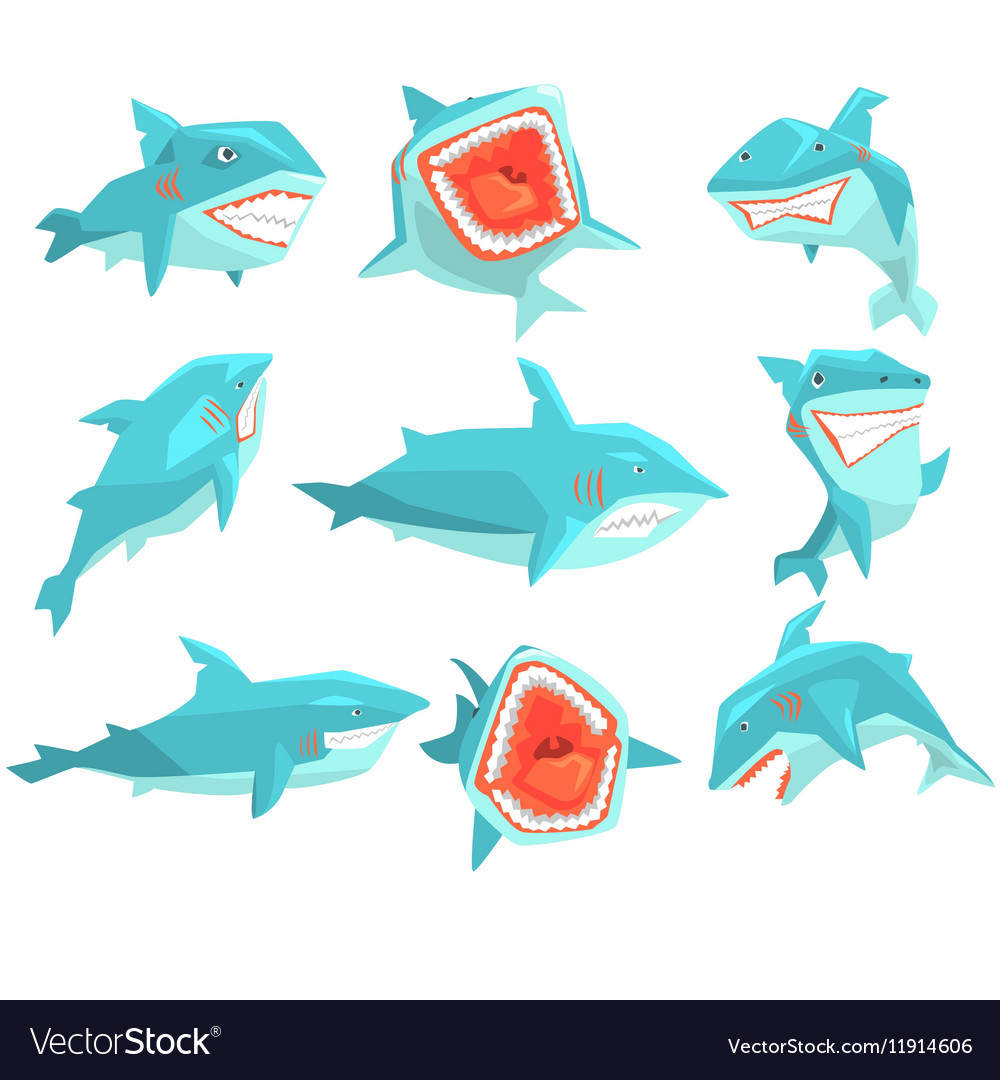 Great white shark marine fish living in warm sea vector