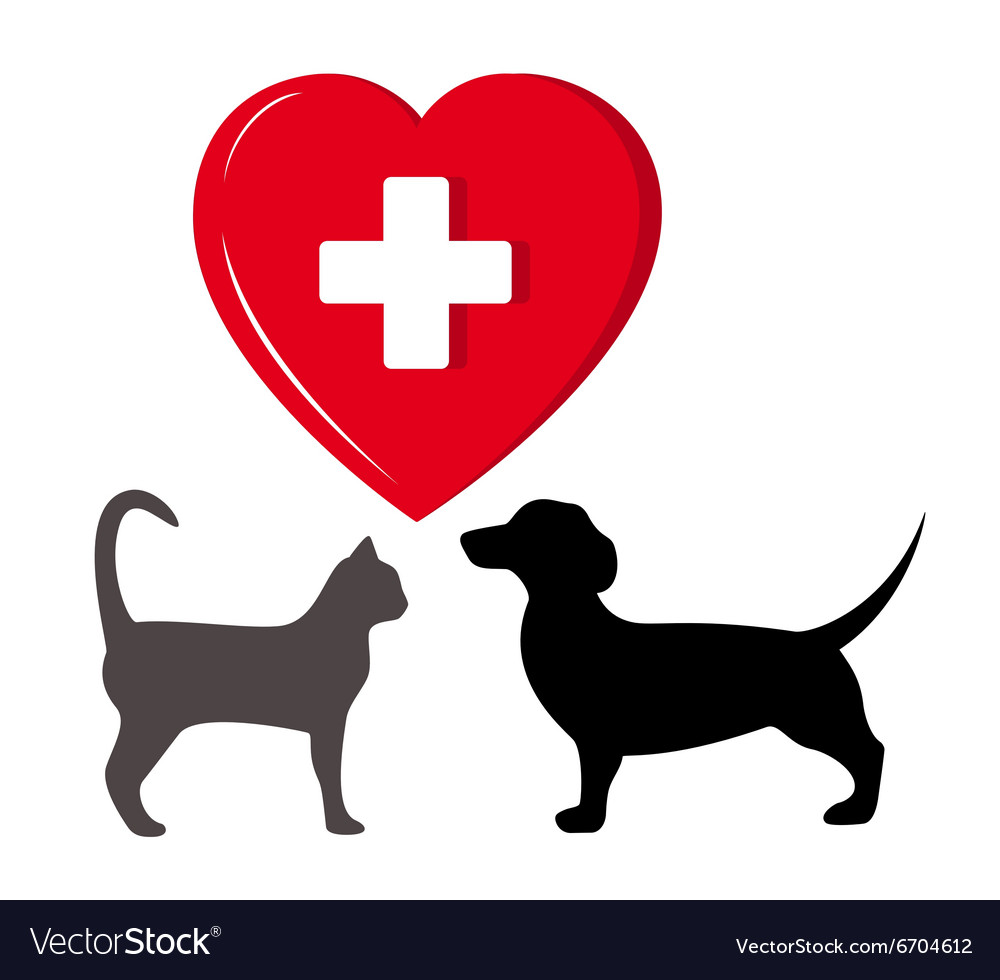 Pet veterinary symbol vector