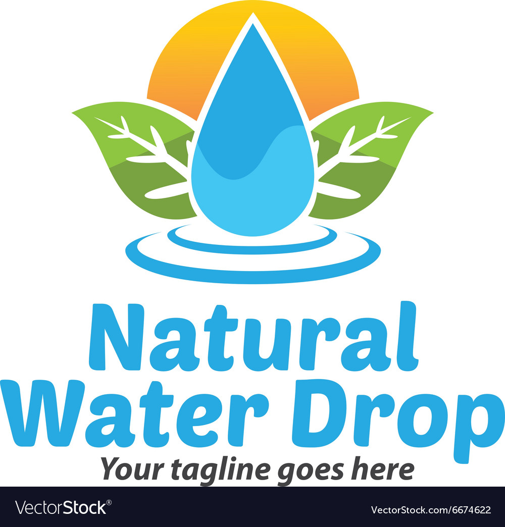 Natural water drop logo vector