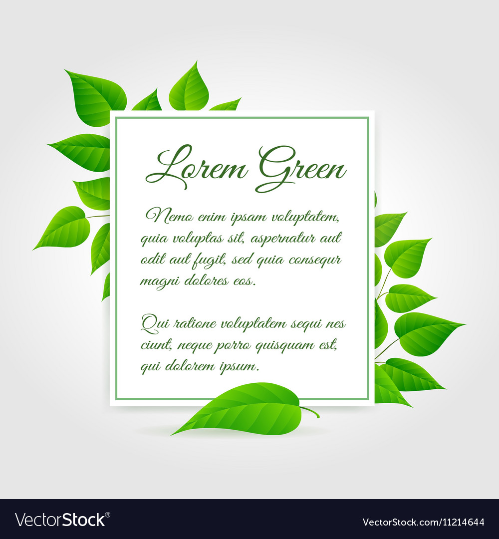 Fresh green leaf border vector