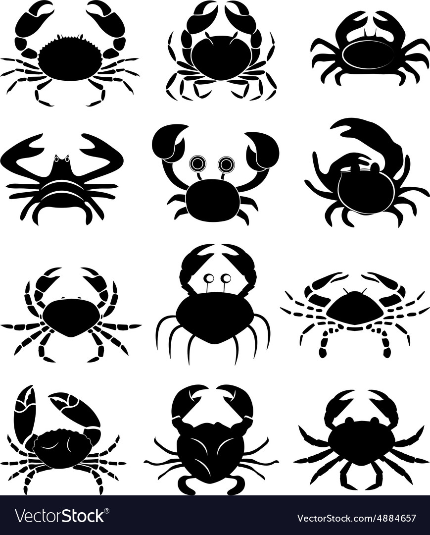 Crabs icons set vector