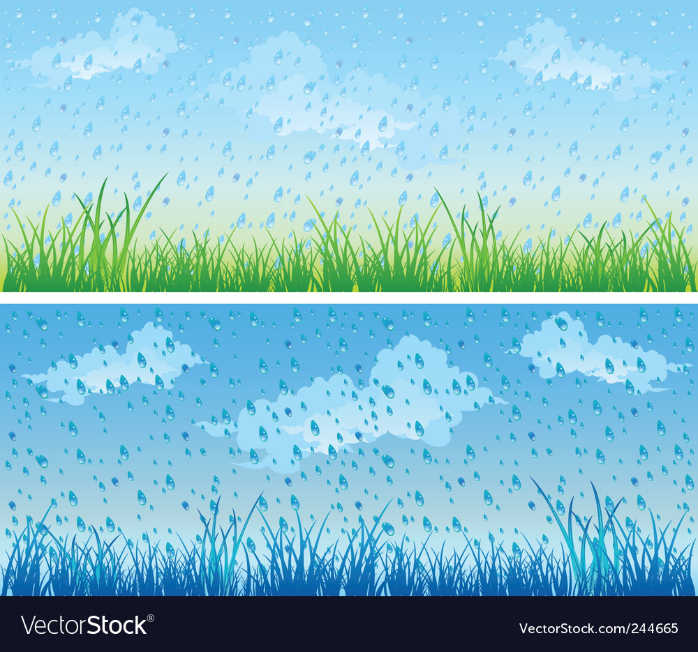 Grass and rain vector