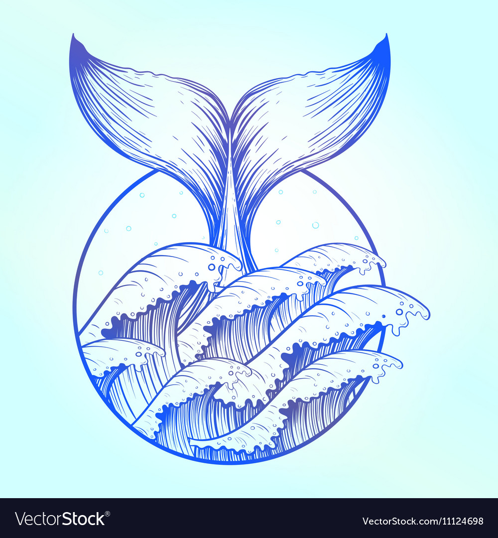 Whale tail in blue sea waves boho tattoo ocean vector