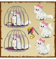 Set of fluffy white cats trapped in a steel cage vector image