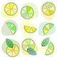 citrus mojito pattern vector image