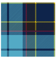 American Blue Tartan Cloth Pattern vector image
