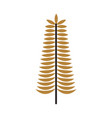 golden branch christmas decoration ornament vector image