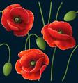 poppy pattern black vector image