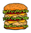 cartoon image of tasty burger vector image