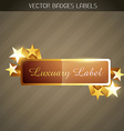 shiny golden label vector image