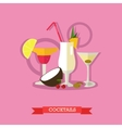 Three alcoholic cocktails with fruits flat design vector image