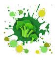 broccoli vegetable logo watercolor splash design vector image