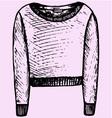 womens sweatshirt vector image