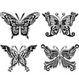 beautiful butterfly set vector image