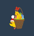 chicken with presents vector image
