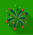 patriotic fireworks icon in flat style isolated on vector image