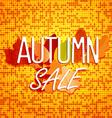 Autumn sale concept Color of autumn leaves vector image