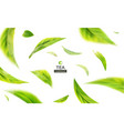 3d with green tea leaves in motion vector image