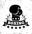 boxing new vector image